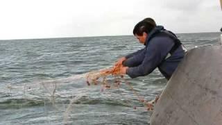 Visserijdagen Workum staand want