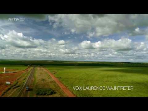 Vidéo Laurence Wajntreter | Voix Narration Documentaire Découverte