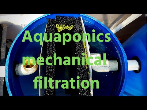 How to make an Aquaponics filter (Hybrid aquaponic system)