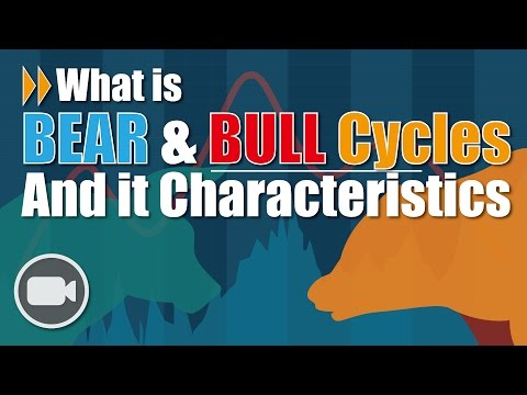 Bear & Bull Cycles And it characteristics | Investing 101 ANIMATION