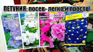 ПЕТУНИЯ: посев- легко и просто/ #plantingpetunias #thegarden #flowersinthevillage
