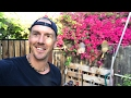 A LIVE TOUR of My BACKYARD GARDEN and EDIBLE LANSCAPE...AMAZING!!!