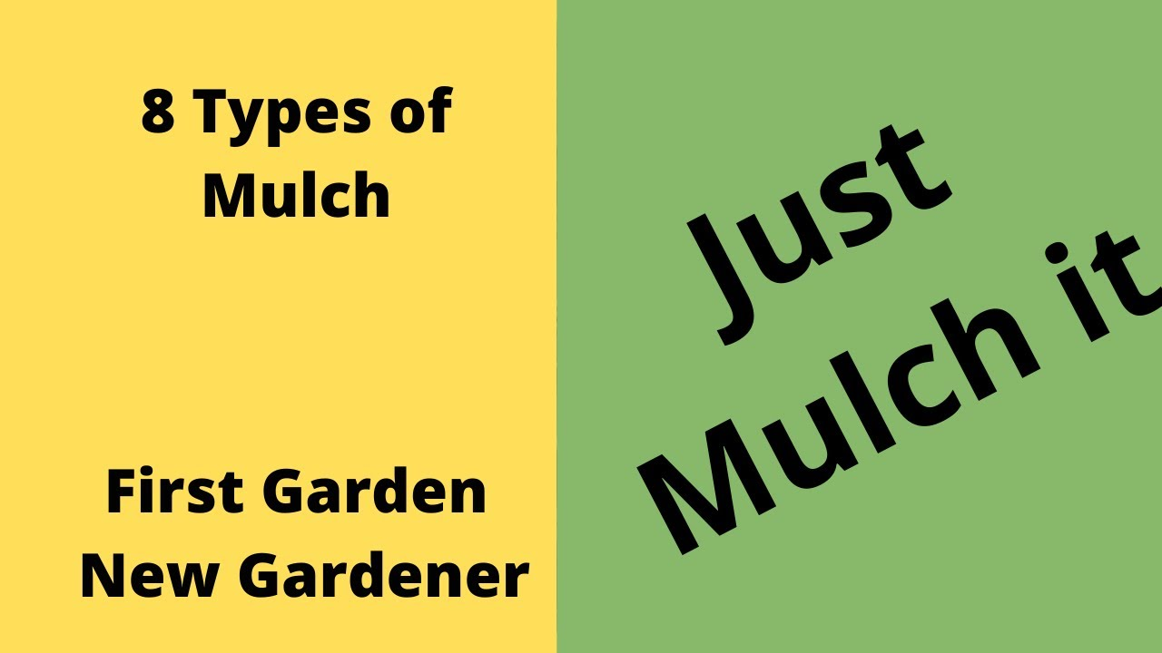 You Have Mulch So Use is - First Garden New Gardener