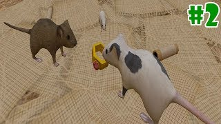 Mouse Simulator - Raise a Family - Android/iOS - Gameplay Episode 2