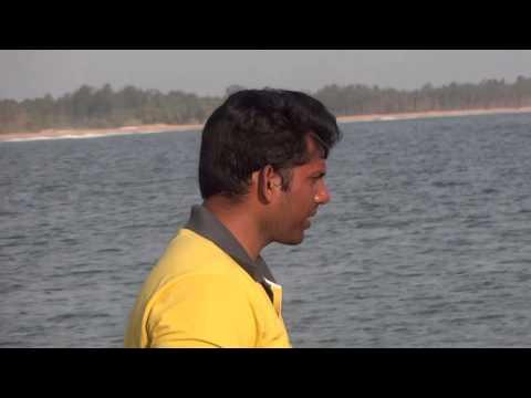 Cobia Fish Cage Culture In INDIA