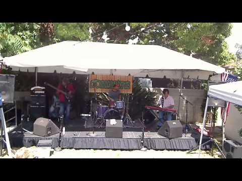 The Dirty Martinis LIVE at Burbstock 2013