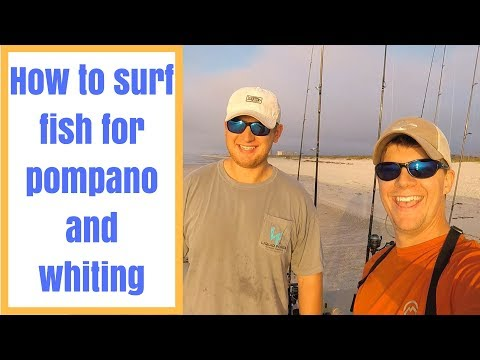 How To Surf Fish For Pompano And Whiting