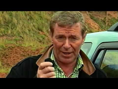 Land Rover - Freelander (L314) -  An Introduction to Freelander (1998)
