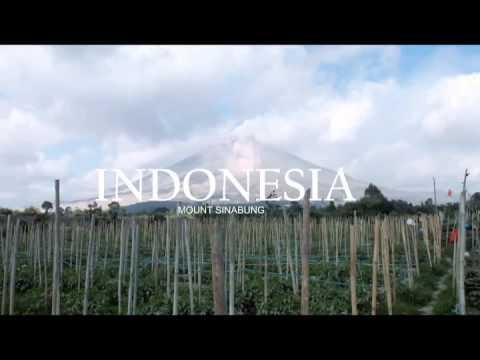 Indonesia | Mount Sinabung