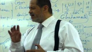 Dr/Akef - ( 3 April - Motor - Basal Ganglia )