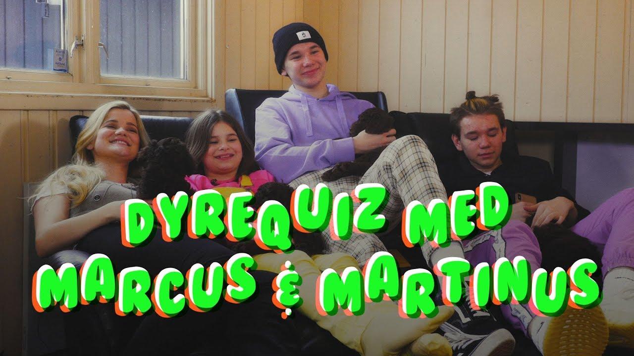 DYREQUIZ med Marcus & Martinus! Del 1