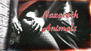 Nazareth - Animals