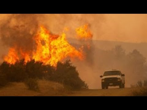 Trump says California wildfires magnified by bad environmental laws