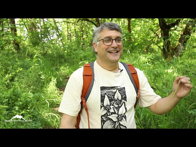 FHP '20 Virtual Plant Walk & Botanical Singalong with Steven Yeager