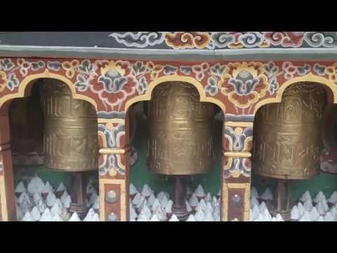 Jigme Dorji National Park , Bhutan