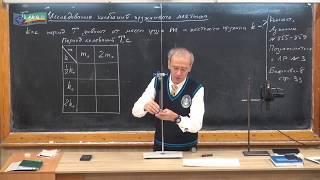 Урок 93 (осн). Исследование пружинного маятника