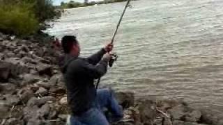rio vista sturgeon fishing 1 OF 1