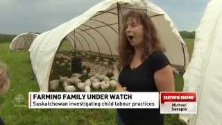 Sask. farmer cries foul over child labour investigation