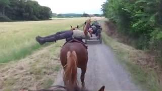 L'attelage cosaque des grands espaces !