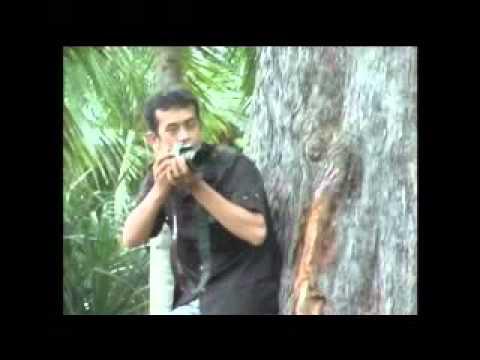 Aceh RPP Bungoeng Jeumpa Rock HD