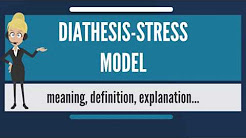 What is DIATHESIS-STRESS MODEL? What does DIATHESIS-STRESS MODEL mean?