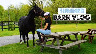 BARN VLOG | Hanging Out With My Horse