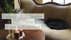 Katzencafé in Leipzig: Café meins deins unser und das Kaiserbad