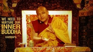 """WE NEED TO NURTURE OUR INNER BUDDHA"" • Karmapa"