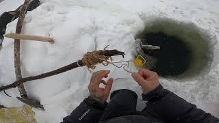 Отчёт с рыбалки 13 11 2020 21