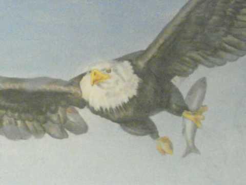 Bald Eagle Fish In Flight