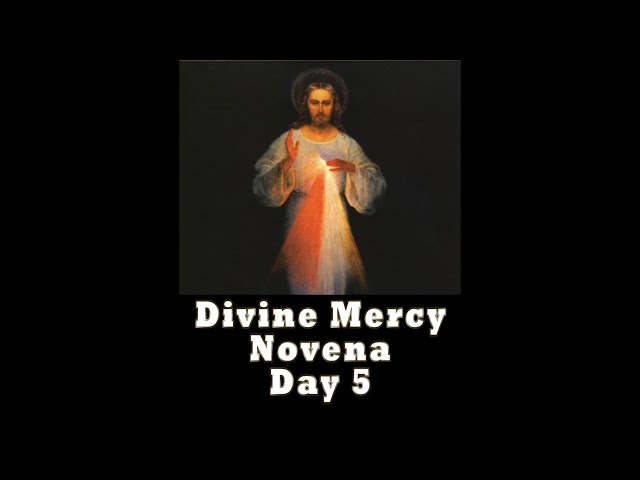 Divine Mercy Novena Day 5 with Father Mike Barry