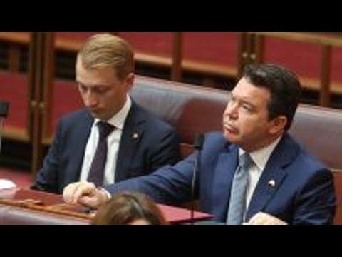 Citizenship crisis: Jacqui Lambie farewells Senate in tearful address