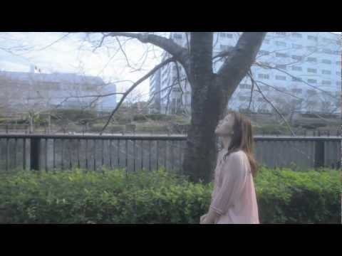 半崎美子「希望の桜」