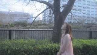 半崎美子「希望の桜」 半崎美子 検索動画 6