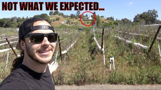 HOUSE HUNTING AGAIN...BUYING AN ABANDONED WINERY?!