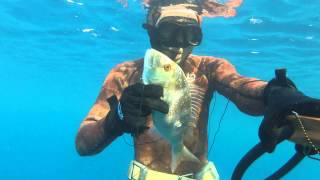 Ceramos Ağustos (Sinarit-Dentex, Tral, Karagöz, Çütre) Spearfishing - Zıpkın Avı Umut Bayır