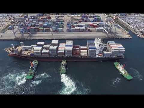 Harbor Star Shipping Services Inc 2017 - AVP