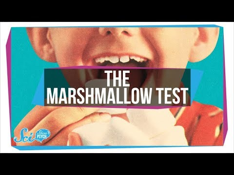 """How The Famous """"Marshmallow Test"""" Got Willpower Wrong"""