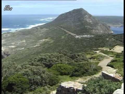 Zuid-Afrika: Kaap de Goede Hoop - Pinguins - Kaapstad Tafelberg. - 2002
