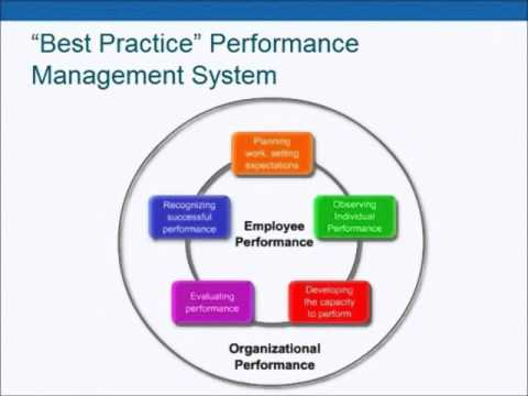 Performance Management 101: Helping Leaders Excel
