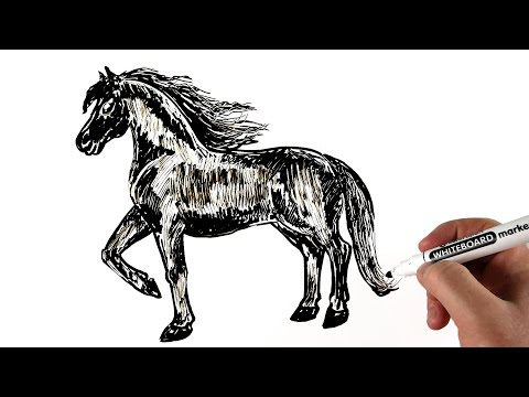 🐴 How To Draw A Horse | Drawing Animals on a Whiteboard