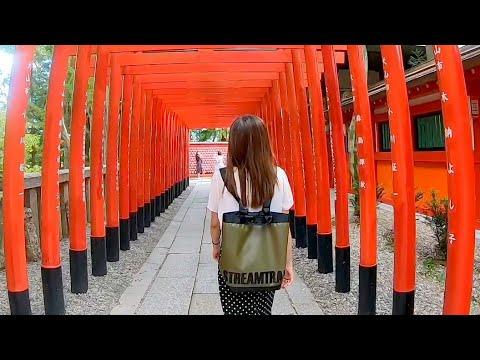 Stream Trail - Mullet in Japan