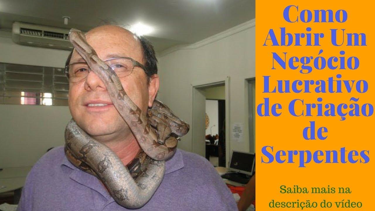 Como Abrir Um Negócio Lucrativo de Criação de Serpentes