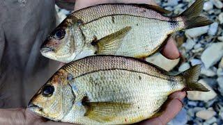 Черное море рыбалка с берега, первый раз рыбачу на Черном море с берега