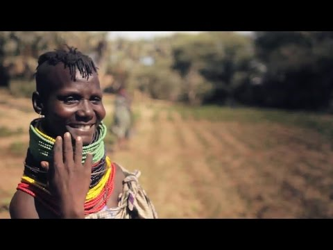 Powering Agriculture: Voices of the Energy Grand Challenge for Development