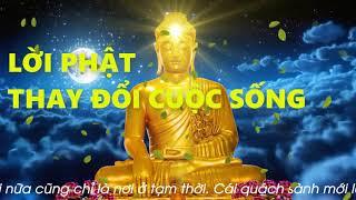 Phật dậy đời người ngắn ngủi vô thường đừng khóc vì khổ đau, nghe mỗi đêm để thay đổi vận mệnh