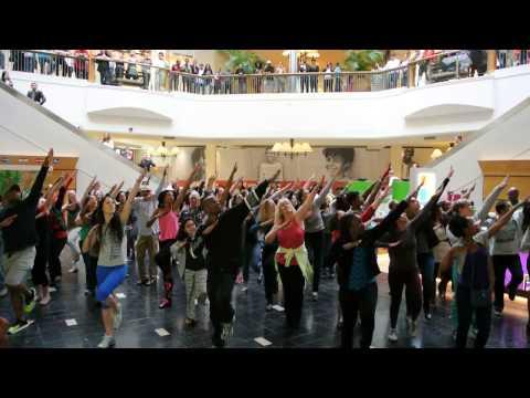 Flash Mob @ Perimeter Mall