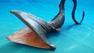 TOP 10 Strangest SHARK Species...