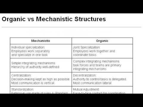 mechanical solidarity and organic solidarity