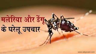 मलेरिया और डेंगू के घरेलू उपचार - Onlymyhealth.com